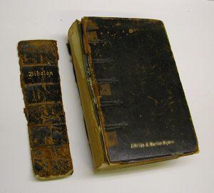 bibel-1915-1